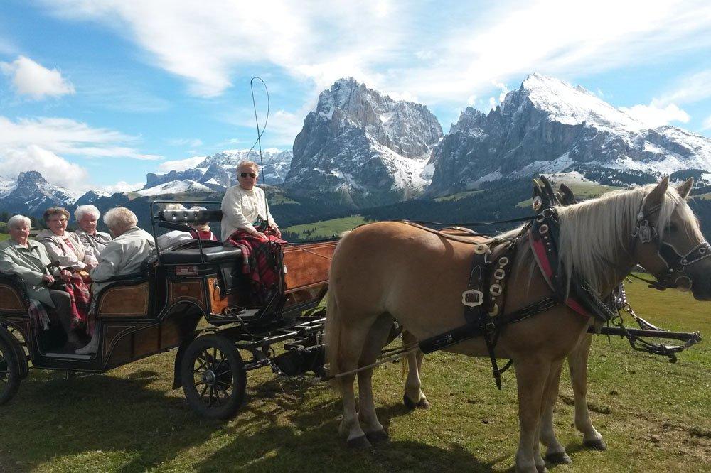 Ein Muss in Ihrem Urlaub auf dem Niglutsch-Hof - Eine Kutschenfahrt auf der Seiser Alm