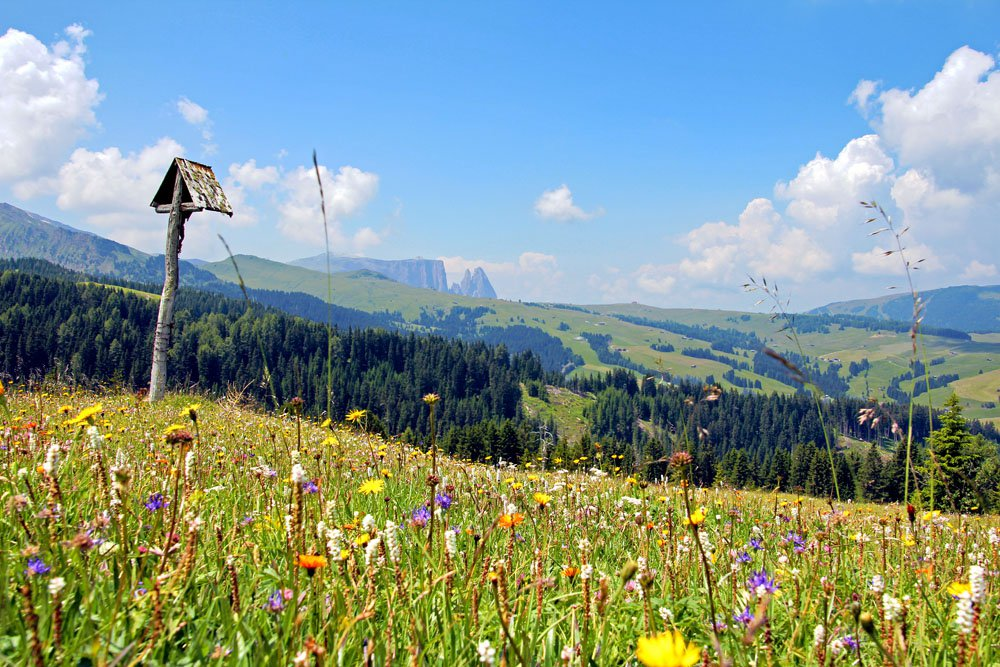 Unforgettable sensations and unique panorama views on the Siusi Alp