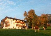 Niglutsch-Hof